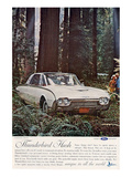 1962 Thunderbird Hush Prints