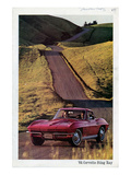 1964 GM Corvette Sting Ray Arte