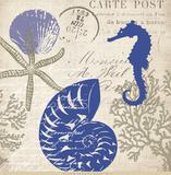 Sea Collage I Affiches par Paula Scaletta