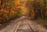 Autumn Tracks into Fall, Bartlett, New Hampshire Fotografie-Druck von Vincent James