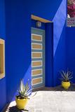 The Majorelle Garden in Marrakech Was Designed by French Artist Jacques Majorelle Fotografisk trykk av Krista Rossow