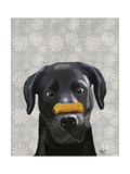 Black Labrador with Bone on Nose Lámina giclée prémium por  Fab Funky