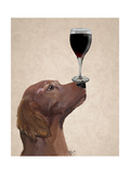 Red Setter Dog Au Vin Premium Giclee Print by  Fab Funky