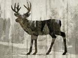 Camouflage Animals - Deer Reproduction procédé giclée par Tania Bello