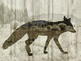 Camouflage Animals - Fox Reproduction procédé giclée par Tania Bello