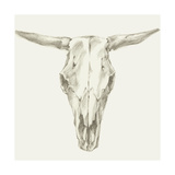 Western Skull Mount II Arte sobre metal por Ethan Harper