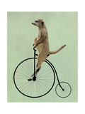 Meerkat on Black Penny Farthing Lámina giclée prémium por  Fab Funky