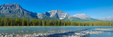 Athabasca River with Mountains in the Background Impressão fotográfica