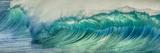 Wave Photo at Papohaku Beach, West End, Molokai, Hawaii Fotografisk trykk av Richard Cooke III