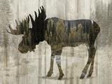 Camouflage Animals - Moose Reproduction procédé giclée par Tania Bello