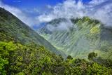 Waikolu Valley, Kamakou Preserve, Molokai, Hawaii Fotografisk trykk av Richard Cooke III