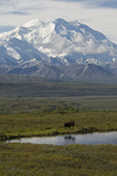Mount Mckinley Looms over a Bull Moose, Alces Alces, Standing Next to a Pond Fotografie-Druck von Barrett Hedges