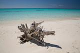 A Caribbean Beach in Cuba's Cayo Largo Impressão fotográfica por Alex Saberi