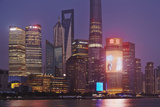 The Towers of Pudong District, with the Shanghai Tower Photographic Print by Nigel Hicks