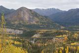A Train Travels across a Bridge in the Fall in Alaska Fotografisk tryk af Barrett Hedges