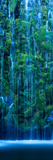 Waterfall in a Forest Fotografie-Druck von Panoramic Images