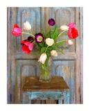 Tulips, Mexico Poster von Alan Klug