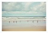 Beachcombing Affiches par Irene Suchocki