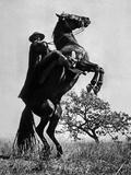Le Signe De Zorro the Sign of Zorro De Norman Foster Et Lewis R. Foster Avec Guy Williams 1958 Photo