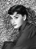 American Actress Audrey Hepburn in 1954 Foto