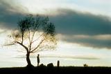 Impitoyable Unforgiven De Et Avec Clint Eastwood 1992 Photographie