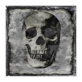 Skull III Giclee Print by Martin Wagner