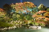 Night Illuminations of Temple Gardens, Shoren-In Temple, Southern Higashiyama, Kyoto, Japan Reproduction photographique par Stuart Black