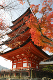 Five-Storey Pagoda (Gojunoto) in Autumn, Miyajima Island, Western Honshu, Japan Fotografie-Druck von Stuart Black