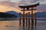 The Floating Miyajima Torii Gate of Itsukushima Shrine at Sunset Reproduction photographique par Stuart Black