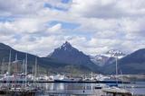 Harbour, Ushuaia, Tierra Del Fuego, Argentina Photographic Print by Peter Groenendijk