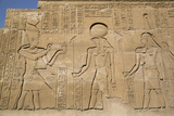 Bas-Reliefs on Walls, Temple of Haroeris and Sobek, Kom Ombo, Egypt, North Africa, Africa Photographic Print by Richard Maschmeyer