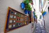 Calle De Las Flores, Cordoba, Andalucia, Spain Photographic Print by Carlo Morucchio