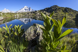 Aiguille Verte from Lac Des Cheserys, Haute Savoie, French Alps, France Photographic Print by Roberto Moiola