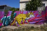 Wonderful Graffiti, Valparaiso, Chile Fotografisk trykk av Peter Groenendijk