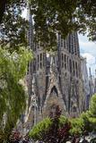 Sagrada Familia, Barcelona, Catalonia, Spain Photographic Print by Mark Mawson