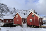 Fresh Snow Covering the Typical Norwegian Homes, the Rorbu, in the Lofoten Islands, Arctic, Norway Impressão fotográfica por Roberto Moiola