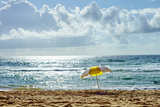 Manly Beach, Manly, Sydney, New South Wales, Australia, Pacific Photographic Print by Mark Mawson