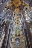 Sagrada Familia, Barcelona, Catalonia, Spain Fotografie-Druck von Mark Mawson