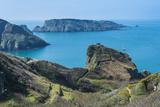 View over the East Coast of Sark and the Island Brecqhou, Channel Islands, United Kingdom Fotografisk trykk av Michael Runkel