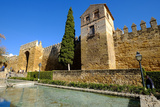 The Arab Puerta De Almodovar and the Mediaeval Wall, Cordoba, Andalucia, Spain Photographic Print by Carlo Morucchio