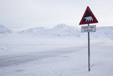 Beware of Polar Bear Traffic Sign on Ice Road Photographic Print by Stephen Studd