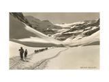 Cross Country Skiers in Bear Valley Konst på metall
