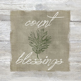Count Blessings Poster di Carol Robinson