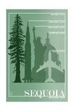 Sequoia National Park - Redwood Relative Sizes Kunstdrucke von  Lantern Press