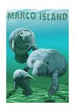 Marco Island - Manatees Kunstdrucke von  Lantern Press