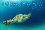 Hanauma Bay, Hawai'i - Sea Turtle Premium Giclee-trykk av  Lantern Press