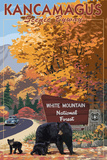 White Mountain National Forest, New Hampshire - Kancamagus Scenic Byway Posters por  Lantern Press