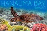 Hanauma Bay, Hawai'i - Sea Turtle and Coral Posters by  Lantern Press