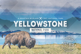 Yellowstone National Park - Bison Rubber Stamp Posters af  Lantern Press