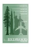 Redwood National Park - Redwood Relative Sizes Plakat av  Lantern Press